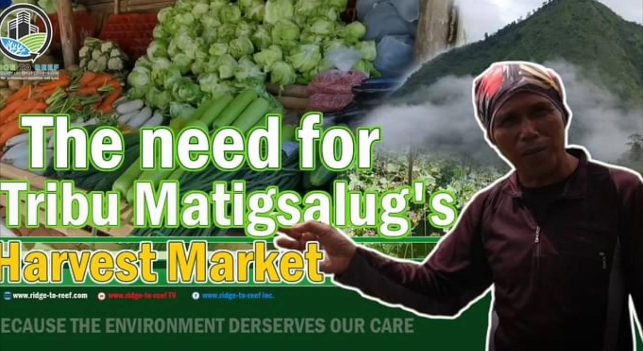 The need for Tribu Matigsalug's Harvest Market