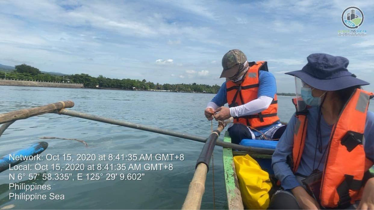 Quarterly Marine Water Quality Monitoring at Davao Gulf