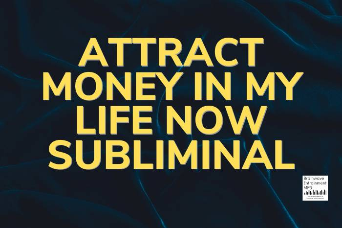 Attract Money Into My Life Now Subliminal