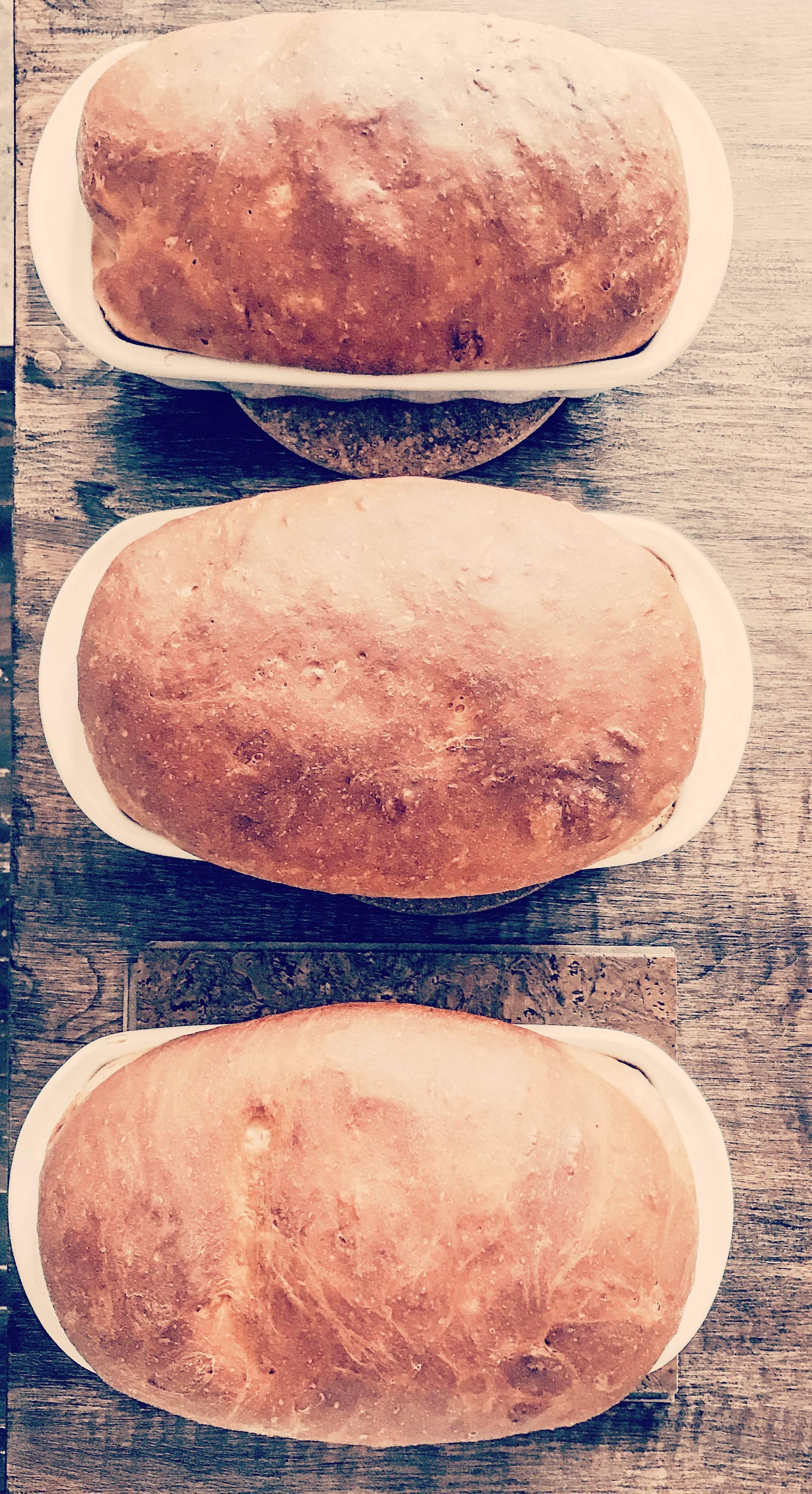 Country White Bread Recipe